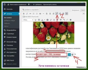 сделать ссылку wordpress